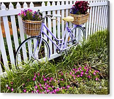 Purple Bicycle And Flowers Acrylic Print by David Smith