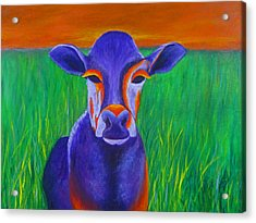 Purple Cow Acrylic Print by Roseann Gilmore