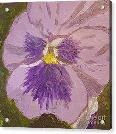 Purple Pansy 1 Acrylic Print by Vicki Maheu