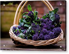 Purple Sprouting Broccoli Acrylic Print by Aberration Films Ltd