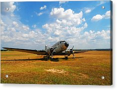 Put Out To Pasture Acrylic Print by Mountain Dreams