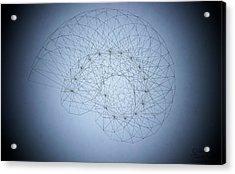 Quantum Nautilus Spotlight Acrylic Print by Jason Padgett