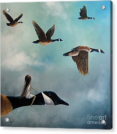 Queen Of The Canada Geese By Shawna Erback Acrylic Print by Shawna Erback