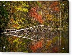 Quiet Waters In Autumn Acrylic Print by Debra and Dave Vanderlaan