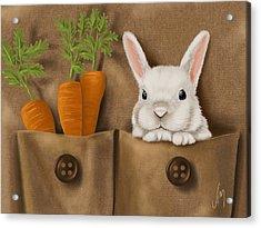 Rabbit Hole Acrylic Print by Veronica Minozzi
