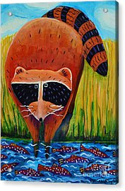 Raccoon Fishing Acrylic Print by Harriet Peck Taylor