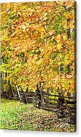 Rail Fence Fall Color Acrylic Print by Thomas R Fletcher