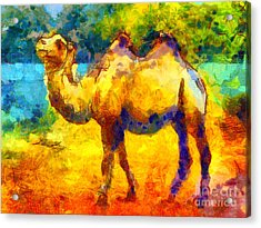 Rainbow Camel Acrylic Print by Pixel Chimp