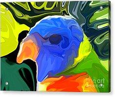 Rainbow Lorikeet Acrylic Print by Chris Butler