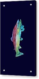 Rainbow Trout Acrylic Print by Jenny Armitage