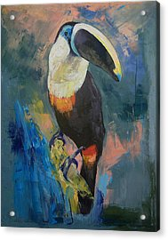 Rainforest Toucan Acrylic Print by Michael Creese