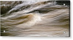 Rapids Acrylic Print by Marty Saccone