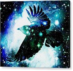 Raven Acrylic Print by Anastasiya Malakhova