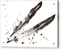 Raven Crow Feathers Acrylic Print by Tiberiu Soos