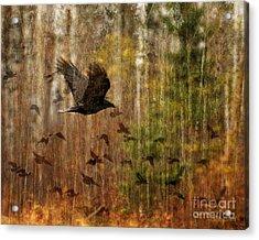 Raven Wood Acrylic Print by Judy Wood