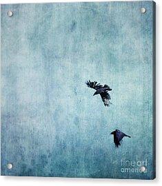 Ravens Flight Acrylic Print by Priska Wettstein