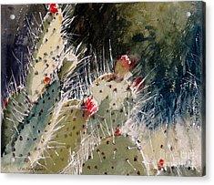 Reach For The Sun Acrylic Print by Sandra Strohschein