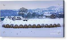 Ready For Winter Acrylic Print by David Birchall