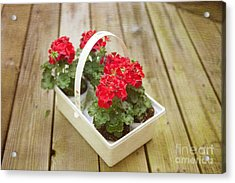 Ready To Plant Acrylic Print by Kay Pickens