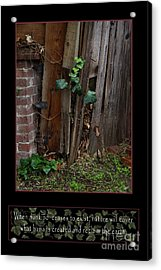 Reclaim No.3 Acrylic Print by Peter Piatt