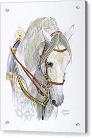 Recluta Acrylic Print by Janina  Suuronen