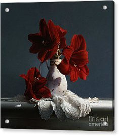 Red Amaryllis Flowers  Acrylic Print by Larry Preston