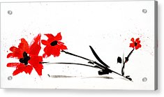 Red And Black Floral Acrylic Print by Patricia Awapara