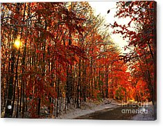 Red Autumn Road In Snow Acrylic Print by Terri Gostola