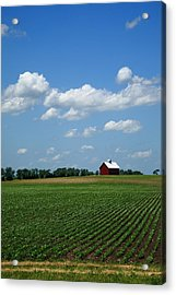 Red Barn And Cornfield Acrylic Print by Frank Romeo