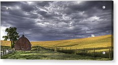 Red Barn With Lamas Acrylic Print by Latah Trail Foundation