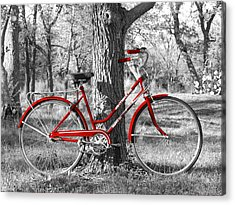 Red Bicycle Acrylic Print by James Granberry