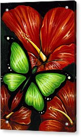 Red Blooms Acrylic Print by Elaina  Wagner