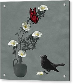 Red Butterfly In The Eyes Of The Blackbird Acrylic Print by Barbara St Jean