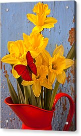Red Butterfly On Daffodils Acrylic Print by Garry Gay
