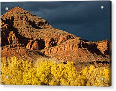 Red Cliffs National Recreation Area Fall Colors Leeds Utah Acrylic Print by Robert Ford