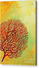 Red Coral Studio 2 Acrylic Print by Gabriela Valencia