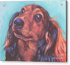 Red Doxie Acrylic Print by Lee Ann Shepard
