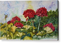 Red Geraniums Acrylic Print by Patsy Sharpe