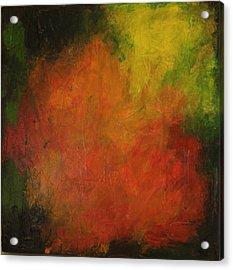 Red Haze Acrylic Print by Jim Ellis