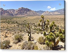 Red Rock Canyon Landscape Nevada. Acrylic Print by Gino Rigucci