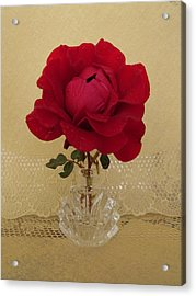 red rose III Acrylic Print by Zina Stromberg