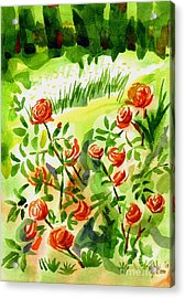 Red Roses With Daisies In The Garden Acrylic Print by Kip DeVore