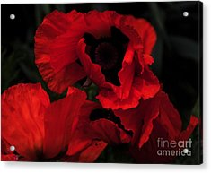 Red Ruffles Acrylic Print by Kathleen Struckle