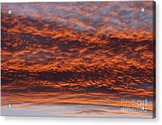 Red Sky Acrylic Print by Michal Boubin