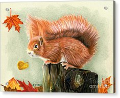 Red Squirrel In Autumn Acrylic Print by Sarah Batalka