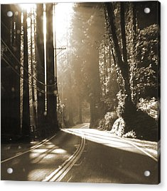 Redwood Drive Acrylic Print by Mike McGlothlen