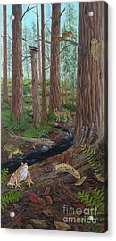 Redwood Forest Acrylic Print by Carlyn Iverson