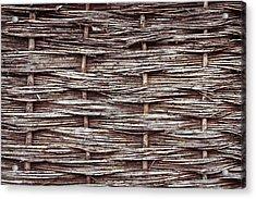 Reed Fence Acrylic Print by Tom Gowanlock