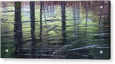 Reflecting On Transitions Acrylic Print by Mary Amerman
