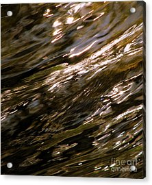 Reflections Acrylic Print by C Ray  Roth